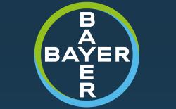 Bayer Logo 2018 quer