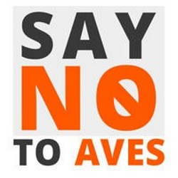 AMEC Say no to AVE