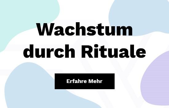 fischerAppelt recode Aug.2018